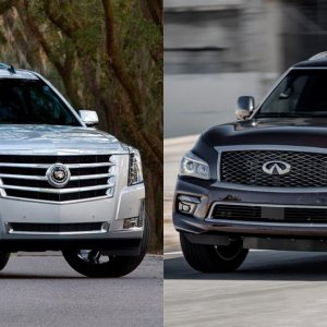 qx80 and escalade